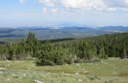 best-mountain-vacation-bighorn-wyoming