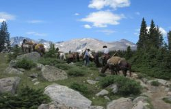 drop-trip-outfitter-guide-bighorn-mountains-wyoming