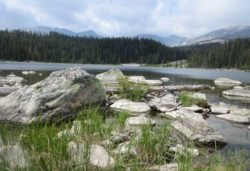 mountain-scenery-fishing-trip-wyoming