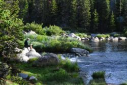 relaxing-getaway-blacktooth-excursions-wyoming